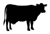Cow Silhouette v1 Decal Sticker
