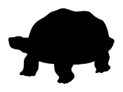 Turtle Silhouette v2 Decal Sticker