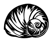Sea Shell 1 Decal Sticker