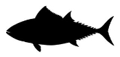Tuna Silhouette Decal Sticker