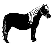 Miniature Horse Decal Sticker