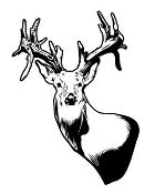 Deer Head v8 Decal Sticker