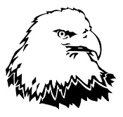 Bald Eagle Head 7 Decal Sticker