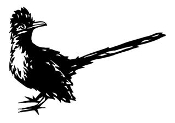 Roadrunner Bird v1 Decal Sticker