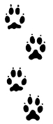 Dog Paw Tracks Decal Sticker