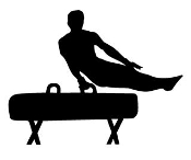 Gymnastics Pommel Horse Decal Sticker