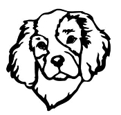 Cavalier King Charles Spaniel Head Decal Sticker