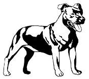 Pit Bull v3 Decal Sticker