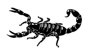 Scorpion v12 Decal Sticker