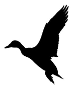 Duck Silhouette v1 Decal Sticker