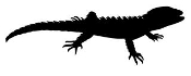 Lizard Silhouette v6 Decal Sticker