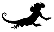 Lizard Silhouette v14 Decal Sticker