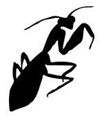 Praying Mantis v3 Decal Sticker