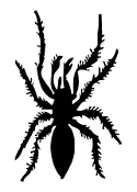 Spider v9 Decal Sticker