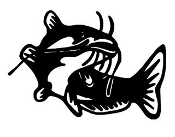 Catfish v4 Decal Sticker