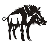 Wild Boar Decal Sticker