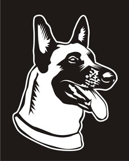Belgian Malinois Head v2 Decal Sticker