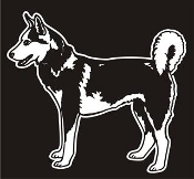 Siberian Husky v3 Decal Sticker