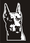 Doberman Head v4 Decal Sticker