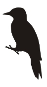 Woodpecker Silhouette v2 Decal Sticker