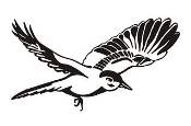 Bird Decal Sticker