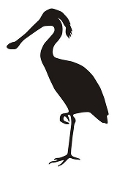 Spoonbill Bird Silhouette Decal Sticker