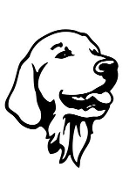 Golden Retriever Head v2 Decal Sticker