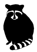 Raccoon v3 Decal Sticker