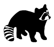 Raccoon v5 Decal Sticker