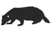 Badger Silhouette Decal Sticker
