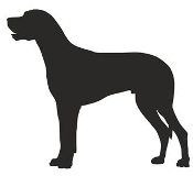 Great Dane Silhouette Decal Sticker