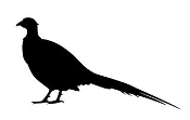 Pheasant Silhouette v2 Decal Sticker