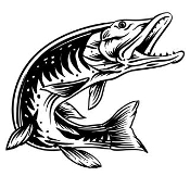 Pike Fish v2 Decal Sticker