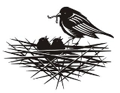 Bird and Nest Decal Sticker