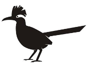Roadrunner Silhouette v3 Decal Sticker