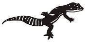 Lizard v3 Decal Sticker