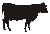 Cow Silhouette v2 Decal Sticker