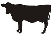 Cow Silhouette v3 Decal Sticker