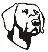 Dog Head v5 Decal Sticker