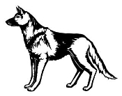 German Shepherd v4 Decal Sticker