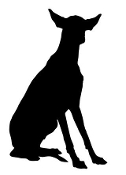 Ibizan Hound Silhouette Decal Sticker