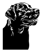 Labrador v6 Decal Sticker