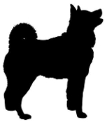 Norwegian Buhund Silhouette Decal Sticker