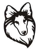 Shetland Sheepdog Head v3 Decal Sticker
