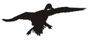 Duck Silhouette v5 Decal Sticker