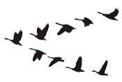 Geese Flying Silhouette Decal Sticker
