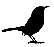 Wren Silhouette Decal Sticker