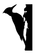 Woodpecker Silhouette Decal Sticker