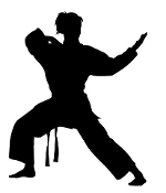 Karate Girl Silhouette Decal Sticker