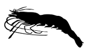 Shrimp Silhouette v1 Decal Sticker